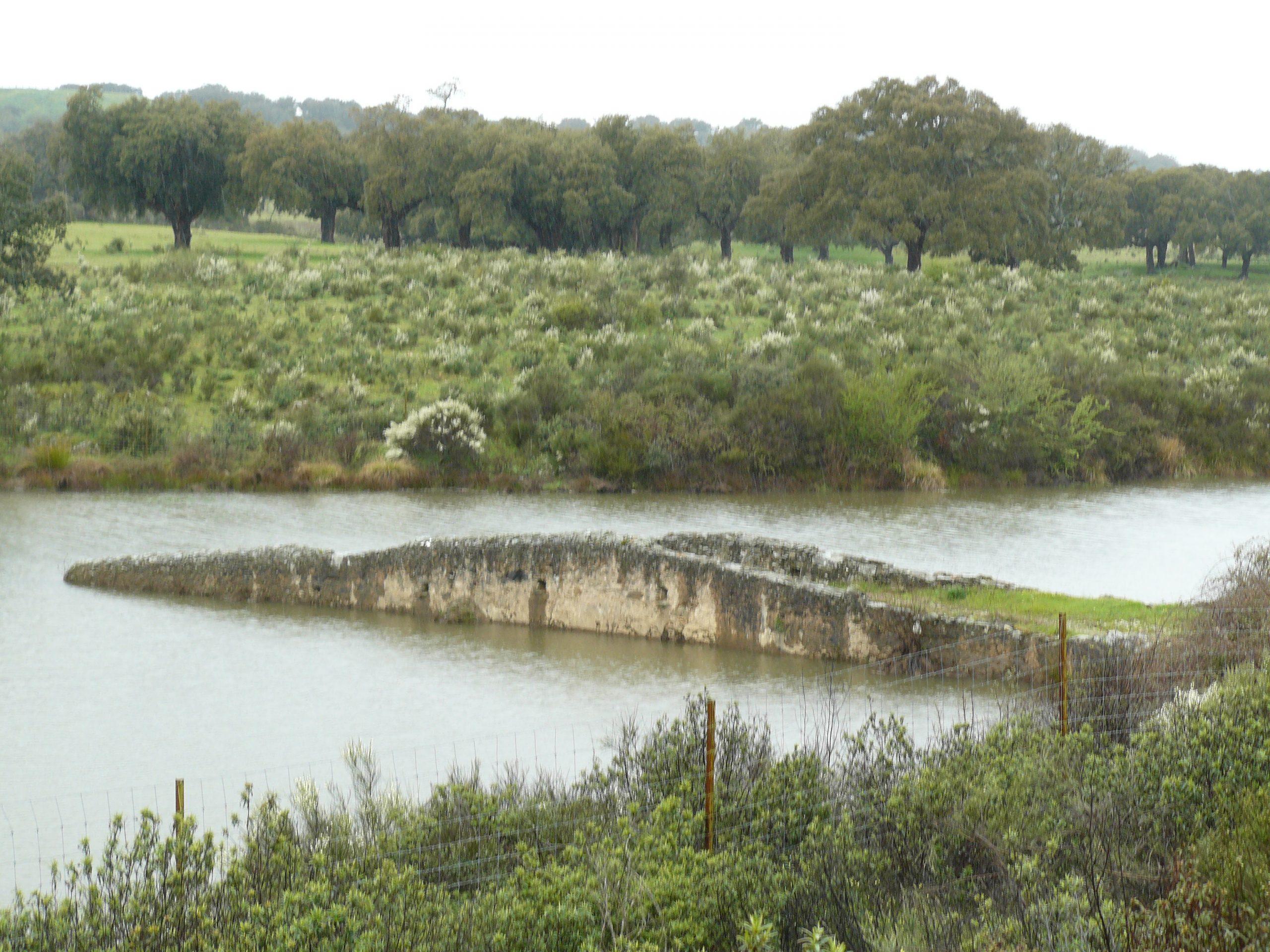 Verdronken brug