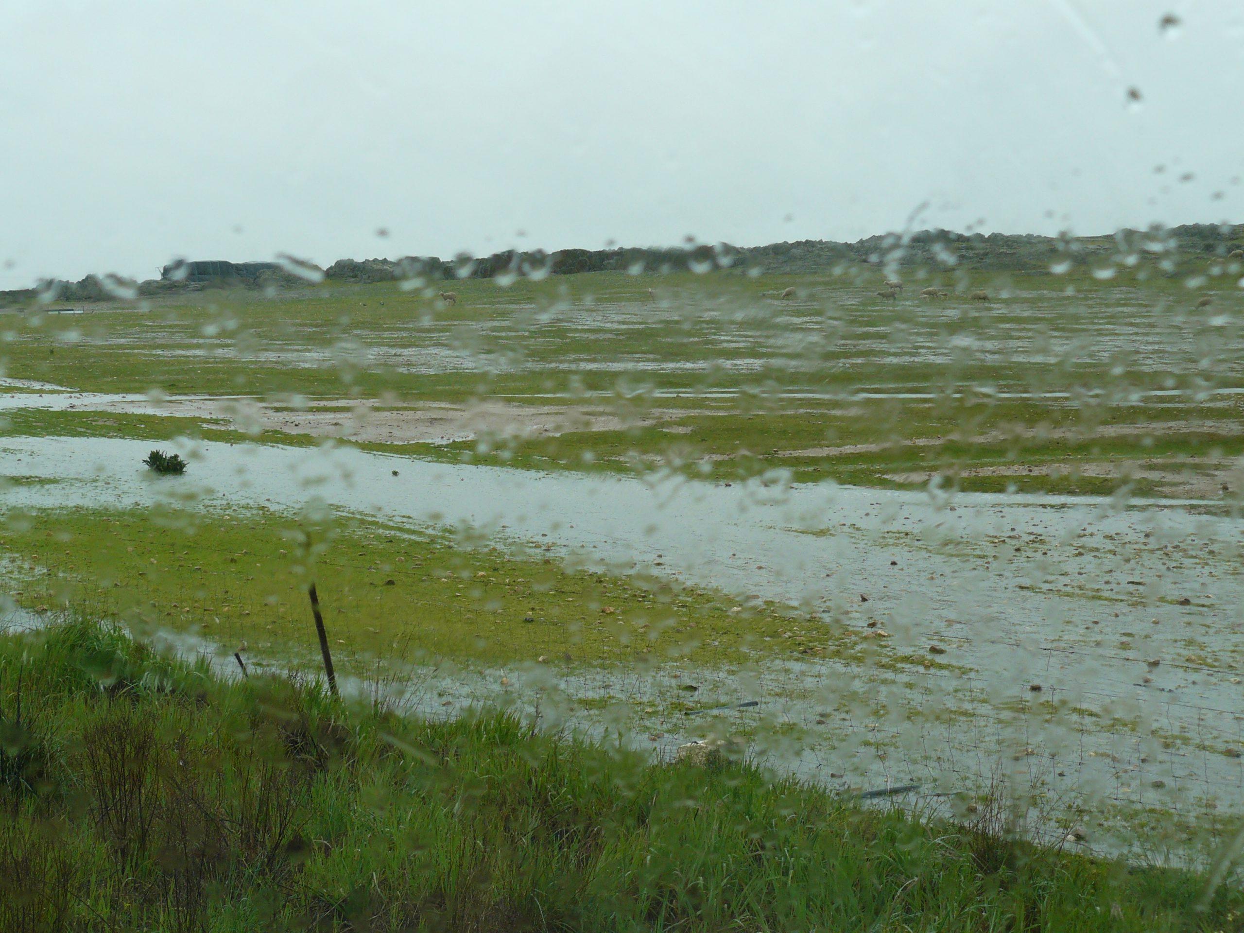 Verregende velden nabij Talavan